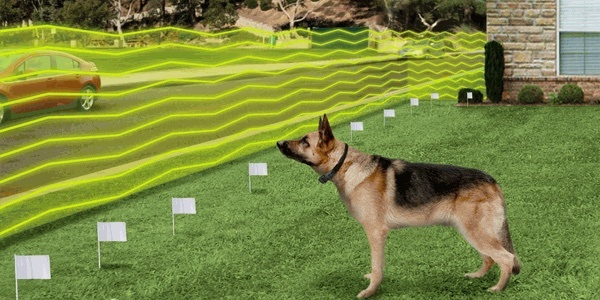 invisible-wireless-dog-fence-2